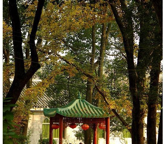 龙虎山森林公园——范蠡西施隐居地