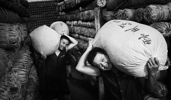 《我们的黑茶》摄影艺术展作品之茶工风采篇(一)