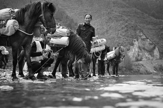 《我们的黑茶》摄影艺术展作品之茶马古道篇(三)