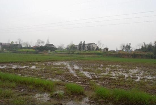 省级文物保护单位——麻绒塘古遗址
